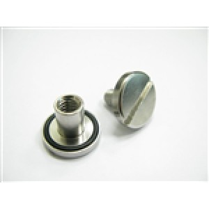 Tecline SS nut and bolt with O-ring short 10mm (1 pc)